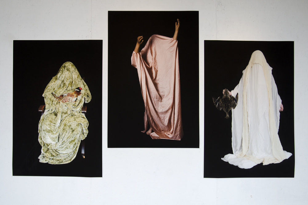 3 Untitled Images, 2012-2014
